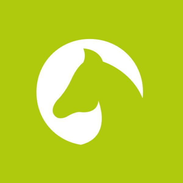 mr. pixel KG | Gloppsprung_Pferdekopf